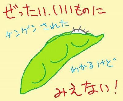s-090803edamame.jpg
