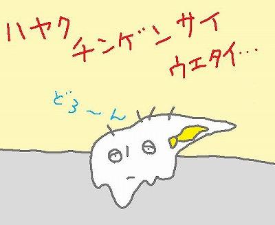 s-090808doron.jpg