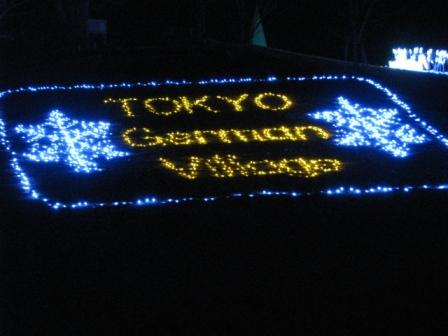 2008.11.30-東京ドイツ村・イルミネーション1