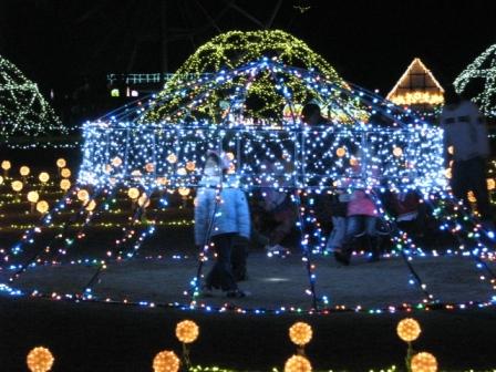 2008.11.30-東京ドイツ村・イルミネーション2