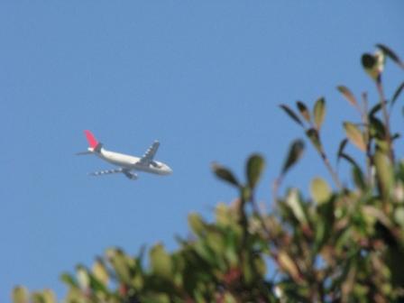 2008.11.30-空と飛行機2