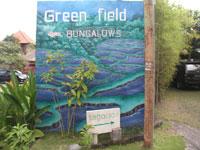 Green-Field-Bglw-002.jpg