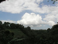 Uma-Ubud-001.jpg