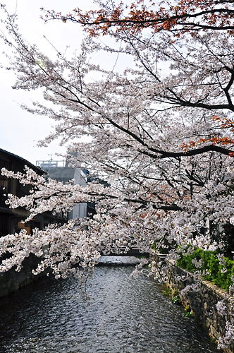 祇園白川2