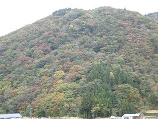家の前の山