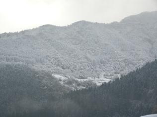 09.11.3 初冠雪