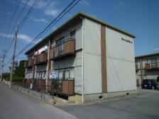 2009秋の花 009
