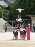 運動会組体操