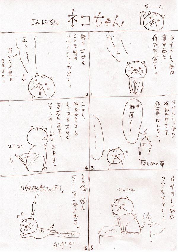 こんにちはネコちゃん3