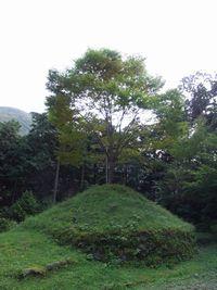 201110237.jpg
