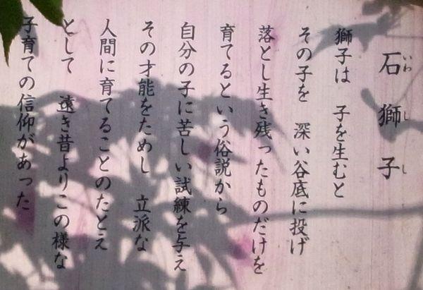 201192533.jpg