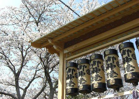 2008jyamatsuri14.jpg