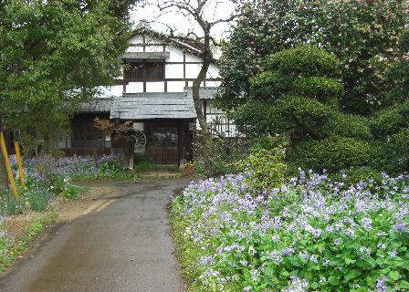 sagiyama02.jpg