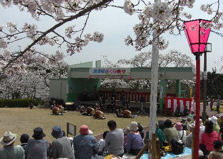 sakuramatsuri2008-1.jpg