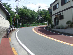 2008_06150134.jpg
