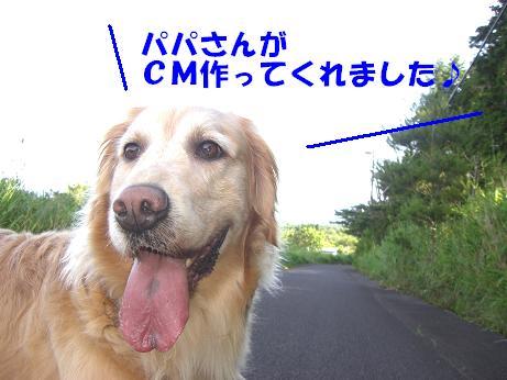 CIMG2174 bg2
