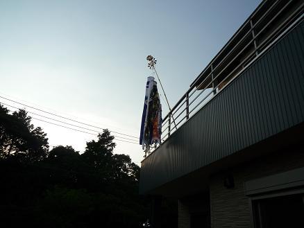 P1020499.jpg