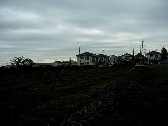近所の畑03」
