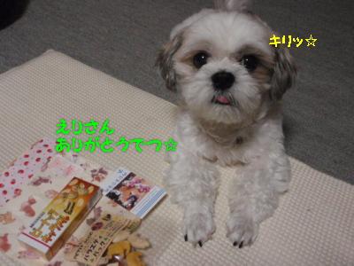 PA071379.jpg