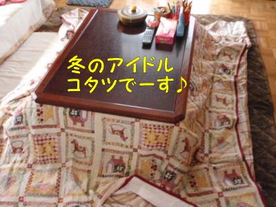 PA120496.jpg