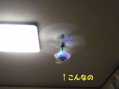 PA130501.jpg