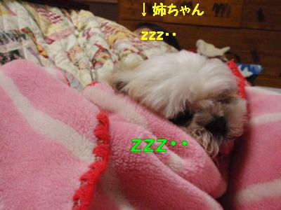 PC050461.jpg