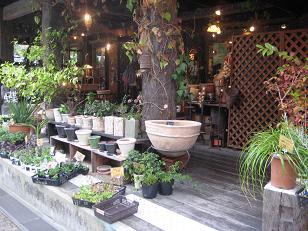 0929植物園のレストラン2