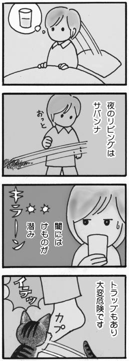 tiisanagoma27.jpg