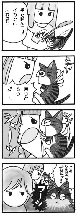 tiisanagoma29.jpg