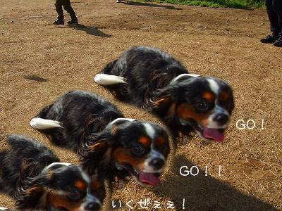 1_20090622133832.jpg