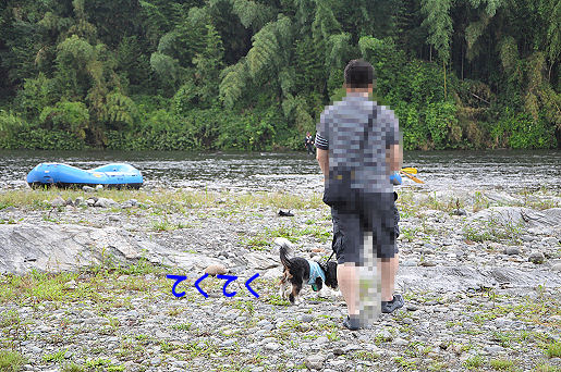 2-3_20090804122819.jpg