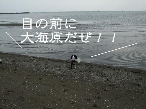 29-うみ