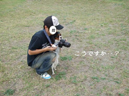 31-カメラ
