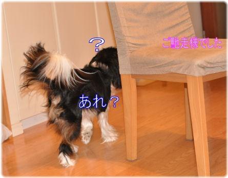 _5_20090701094644.jpg