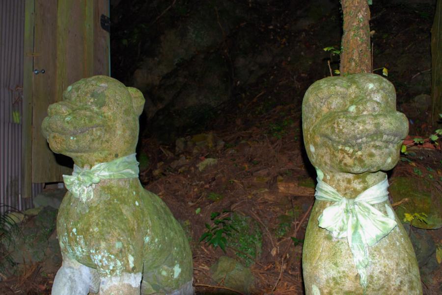 鳳来寺神宮の狛犬b