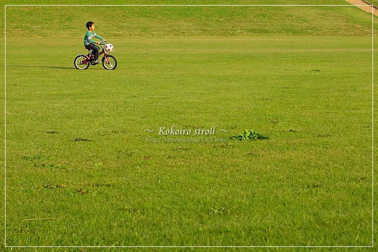 芝生広場を走る。