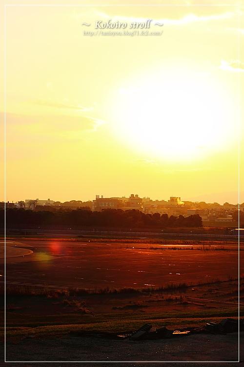 飛行場の夕日