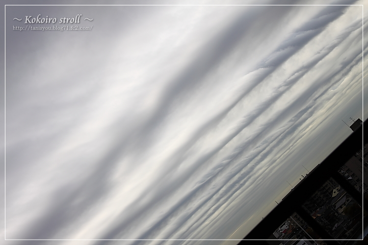 ロープな雲2
