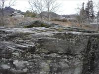 2012-02-26_132828.jpg