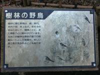 2012-03-15_150329.jpg