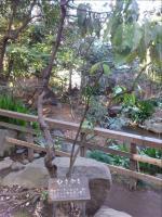 2012-03-15_150629.jpg