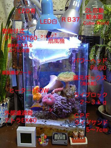 20080112seitaka30.jpg