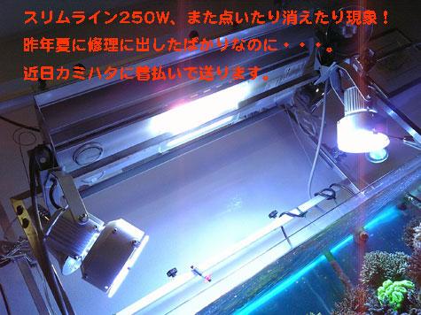 20080408slimline.jpg