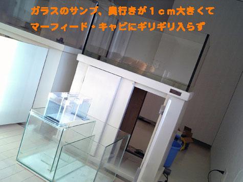 20080417gosan1.jpg