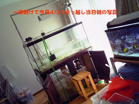 20080419120.jpg