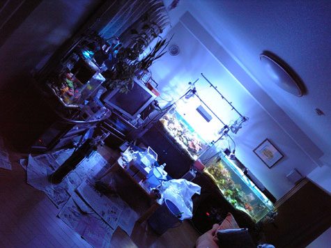 20080428oldroom.jpg