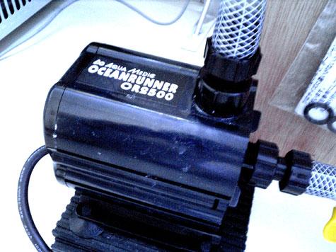 20080602or2500.jpg