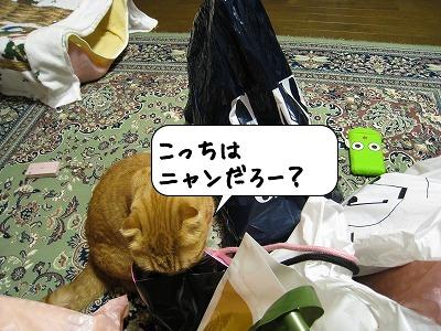 20090110_204727.jpg
