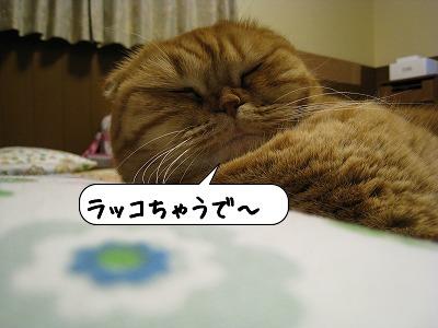 20090117_204602.jpg