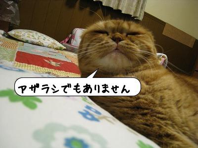 20090117_204941.jpg